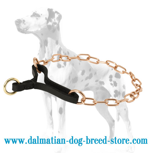 Strong choke dog collar with for obedience training