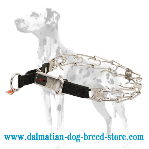 Dog prong collar for Dalmatians with click-lock buckle