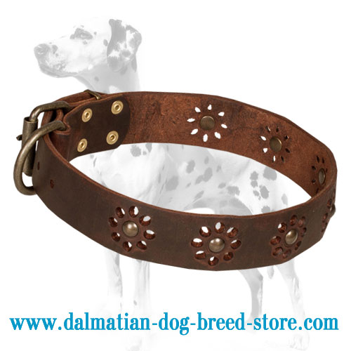 Dalmatian collar, flower print