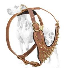 Dalmatian genuine leather dog harness