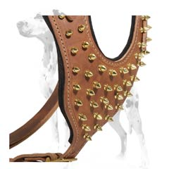 Dalmatian reliable leather dog harness