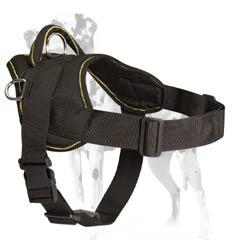 Dalmatian nylon pulling harness