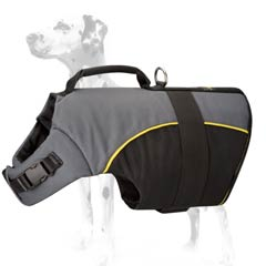 Dalmatian nylon dog harness practical for winter season