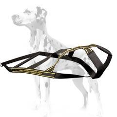 Dalmatian extra strong nylon harness