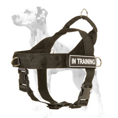 Nylon dog harness with id patches for Dalmatian