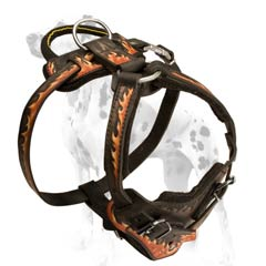 Dalmatian harness with interior padding