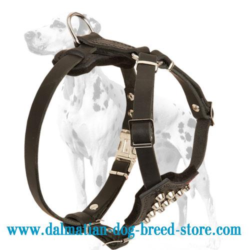 Dalmatian puppy harness with soft felt padding