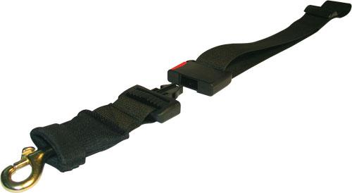 Stylish dog leash