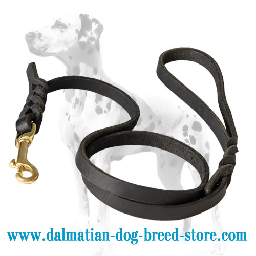 Dalmatian dog lead, superb quality