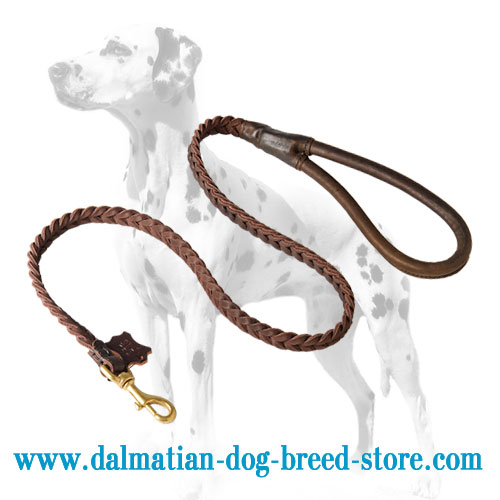 Dalmatian leather lead, braided style
