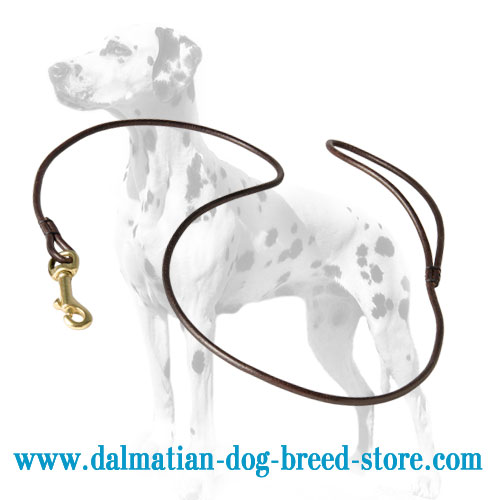 Dalmatian show leash made of leather