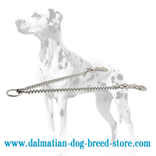 Convenient dog coupler for Dalmatians
