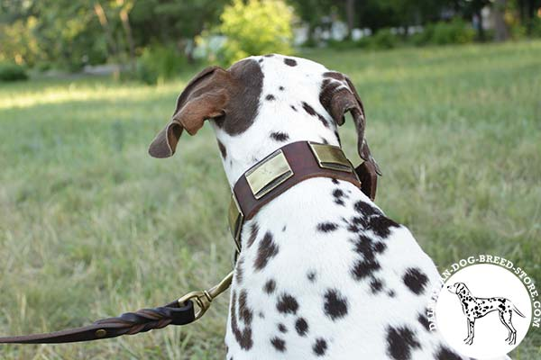 Dalmatian leather leash with rust-resistant hardware for quality control