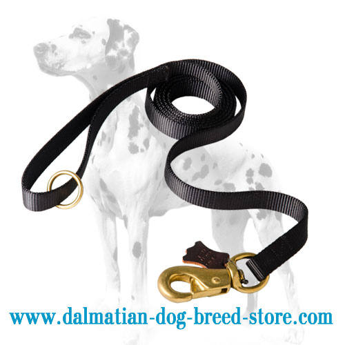 Nylon dog lead, extra durable and strong