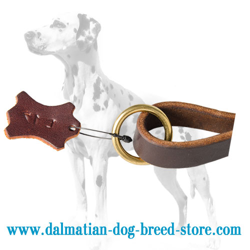 Brass O-ring of Dalmatian dog lead