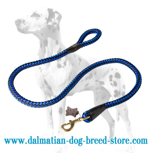 Strong Dalmatian leash of nylon with brass snap