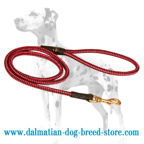 Dalmatian nylon lead, red / black chessboard pattern