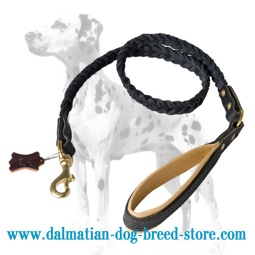 Dalmatian leash , heavy-duty braid