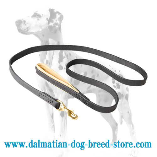 Dalmatian dog leash for extra convenient walking