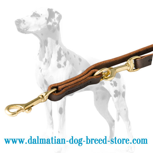 Dalmatian dog leash with 2 stationary rings