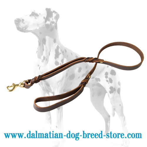 Strong Dalmatian leash of full-grain leather with brass snap