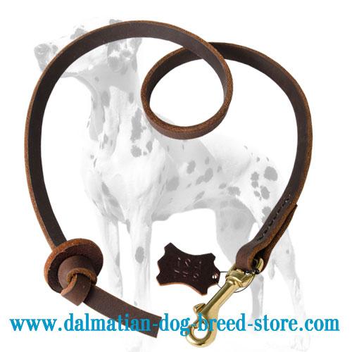 Dalmatian leather leash, 1/2 inch wide