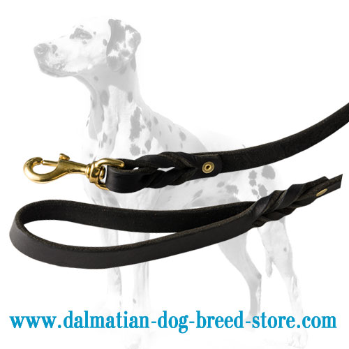Dalmatian leash of strong leather