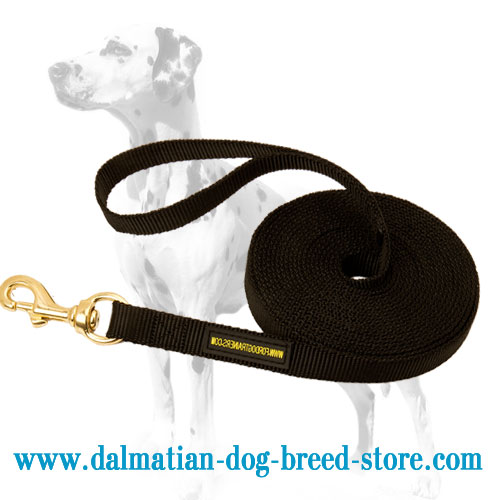Dalmatian nylon tracking lead