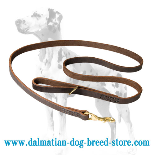Dalmatian leash , excellent design