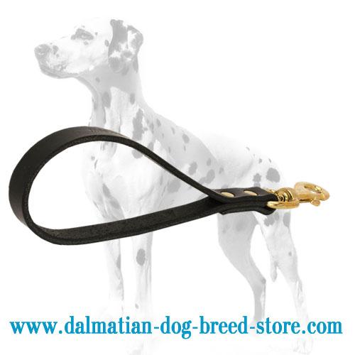 Dalmatian leash, short length