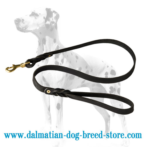 Leather dog lead, braids for flexibility