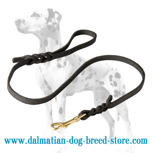 Dog leash for Dalmatian, nice look and superb quality