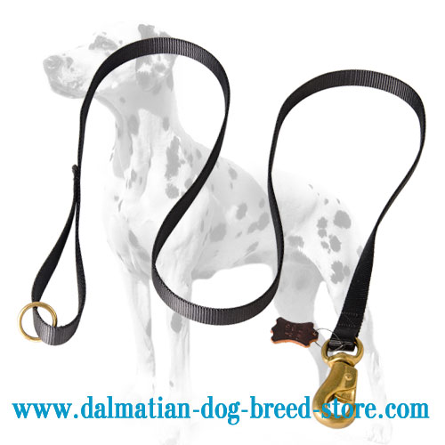 Dalmatian nylon leash, 6 Ft long