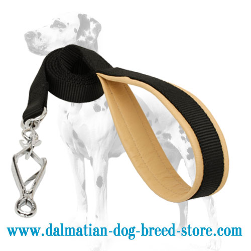 Extra-strong nylon lead for Dalmatian