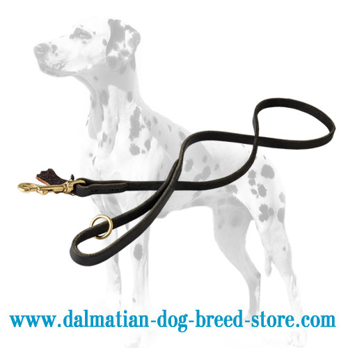 Dalmatian leather lead, rounded edges