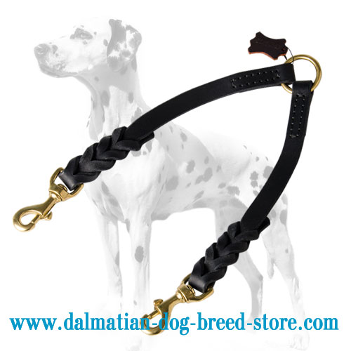 Leather dog coupler, excellent quality