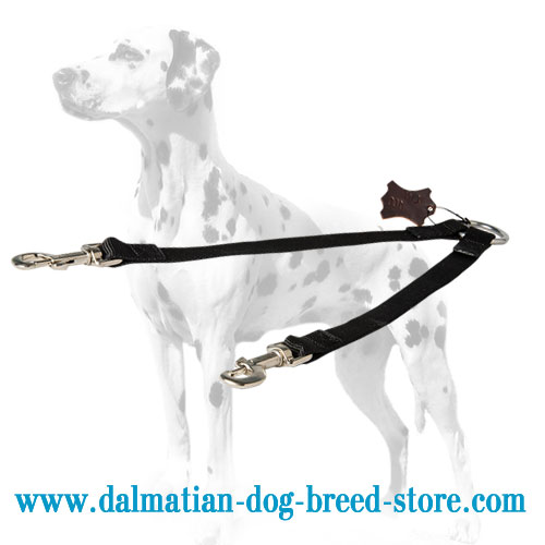 Dalmatian dog nylon coupler, 3/4 inch wide straps