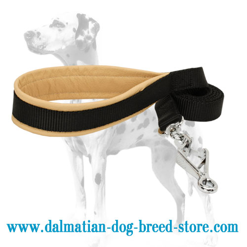 Dog nylon lead, padded handle
