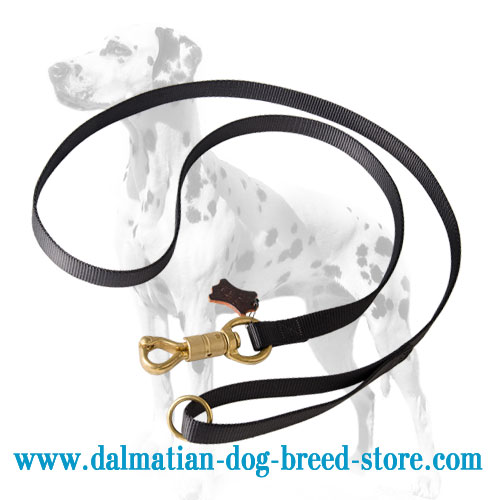 Dalmatian dog leash, 3/4 inch wide extra strong nylon