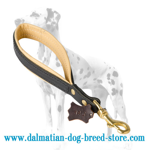 Leather dog lead, short for better control