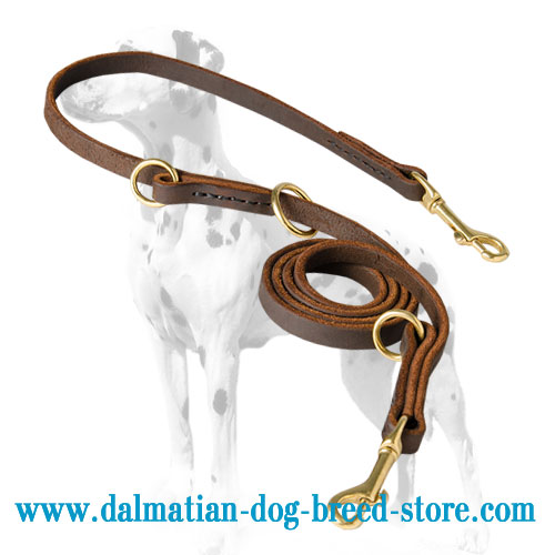 Dog leather leash for Dalmatians, brass rings and snap hooks for different modes