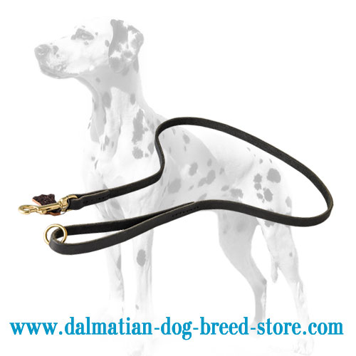 Dog leather lead, stitched handle