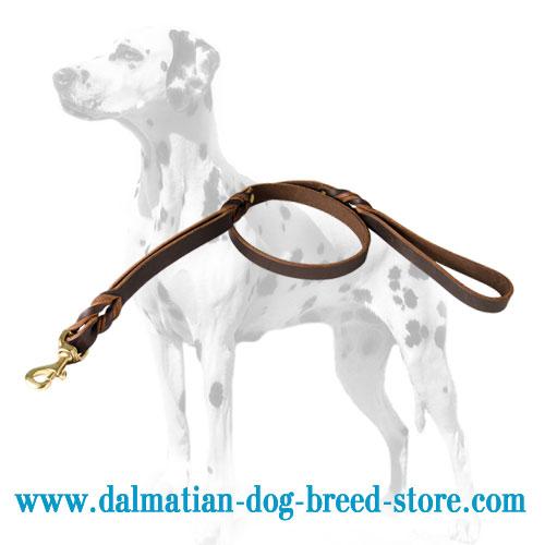 Dalmatian leathr lead in brown