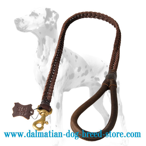 Dog leather leash with comfy round handle