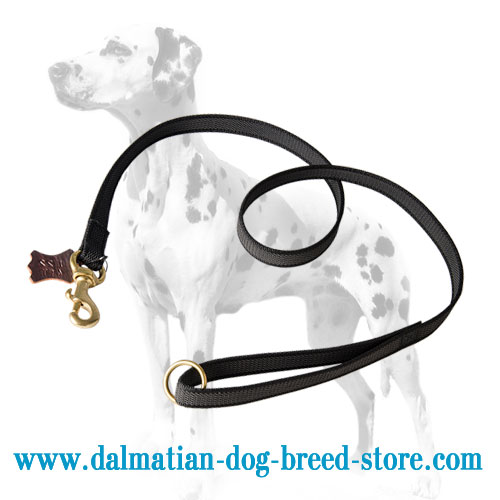 Dalmatian nylon leash, brass floating O-ring and snap