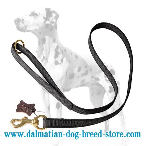 Dalmatian dog lead, 3/4 inch wide