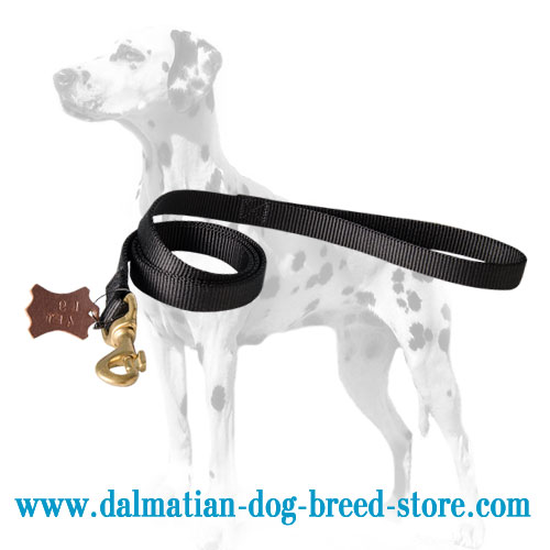 Dalmatian dog lead with brass snap