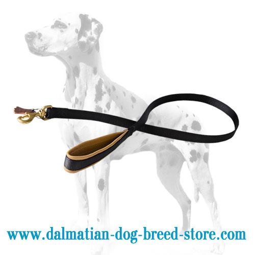 Nylon dog lead, leather padded handle