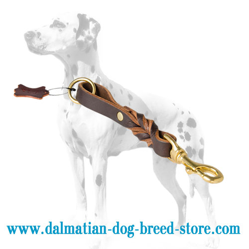 Dalmatian leather pull tab lead, 8 inches