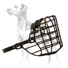 Splendid wire cage muzzle for Dalmatian